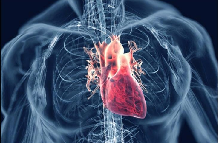 Conozca porque los ronquidos son un problema para el corazón